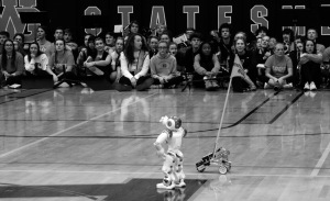 The pep band watches the Robotics team's robots during the spirit week pep rally. (photo by Lee Drake)
