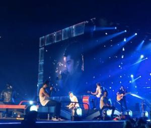 "One Direction sings its song ""Little Things"" on the Where We Are Tour in St. Louis on Aug. 27, 2014. Photo by Riley Mullgardt"