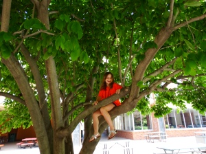 "Sarah sits in a tree ""at a desk"" as she said. Photo by Sky Mueller"