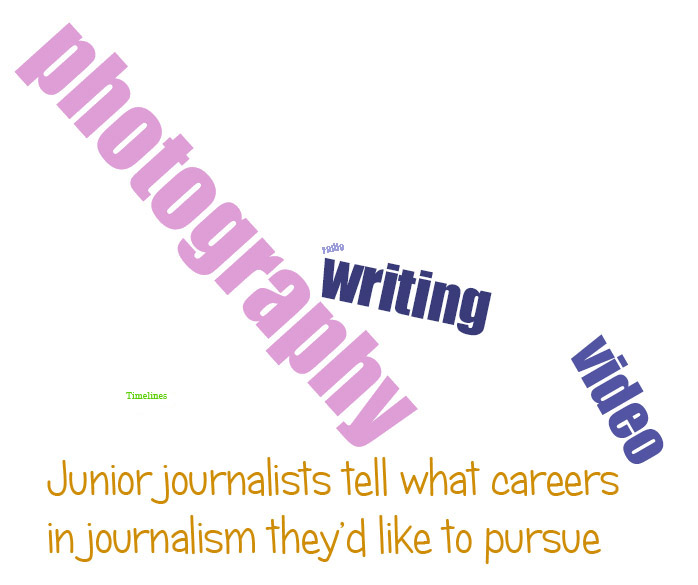 What journalism careers would you like to do