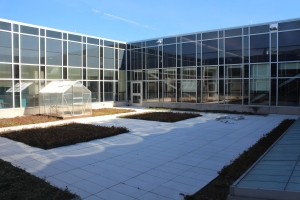 The sun beats down on the third floor garden greenhouse during school. Science teachers Regina Lynch, Kyle Lockos, Jeanette Hencken and Marty Walter all have classrooms that face the garden. Photo by Jack Killeen