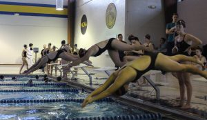 Webster women's swimmers launch into a race at the Oakville meet on Jan. 12. The Stateswomen are competing in State finals events today. Photo by Greg Frazier