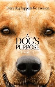 """A Dog's Purpose,"" released Jan. 27, tells the story of a canine's quest to learn the meaning of lives. Made on an estimated budget of $22 million, the film earned over $18 million its opening weekend. Photo from universalpictures.com"